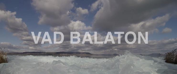 balaton-1.jpg