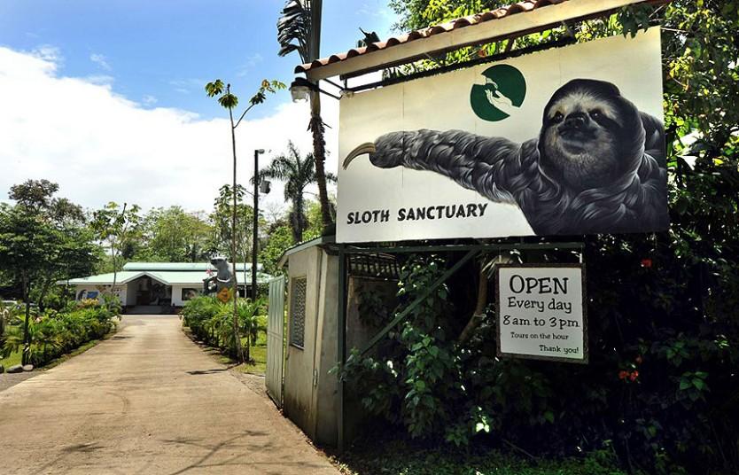 sloth_sanctuary_13_2928209k.jpg