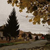 Csendes ;-) őszi utca...