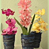 Váza csodák ~ paverpollal