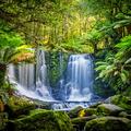 Tasmania a világ előtt