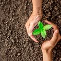 Fontos a környezetvédelem a magyarok számára