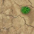 Milyen lenne a Föld víz nélkül?