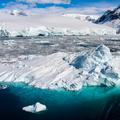Miért zöldül a hótakaró az Antarktiszon?