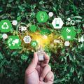 A fenntarthatóság nemcsak menő, de kifizetődő is lehet