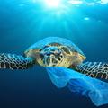 Óceánoktól a folyókig: hol tart ma Boyan Slat és a Nagy Műanyagmentesítés?