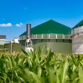 Biogáz 1x1