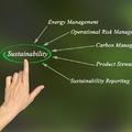 A vállalatok itthon is gyúrnak a fenntarthatóságra