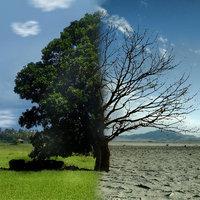Merre tart most a fenntarthatóság?