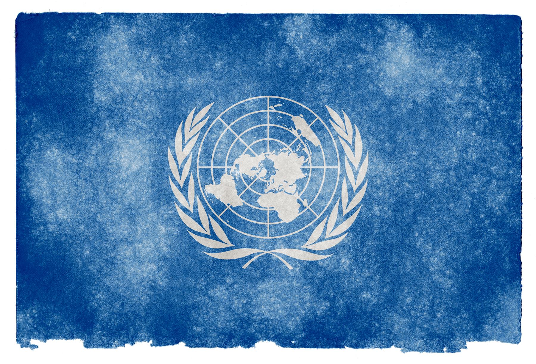 stockvault-united-nations-grunge-flag134749.jpg
