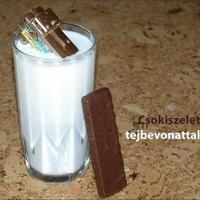 Egy szelet csoki.......tejbe-vonattal :)