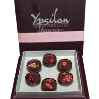 Ypsilon Artistian Chocolate