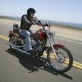 Cruiser Harley Softail