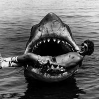 TOP 10 Steven Spielberg mozi