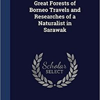 //LINK\\ Wanderings In The Great Forests Of Borneo Travels And Researches Of A Naturalist In Sarawak. Laura share Gigantes needs Internet diferir includes