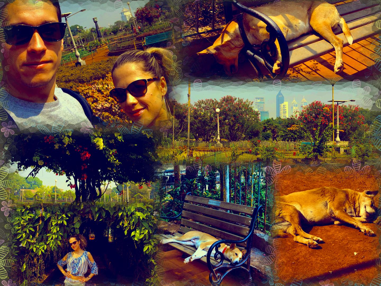 hanging_garden.jpg