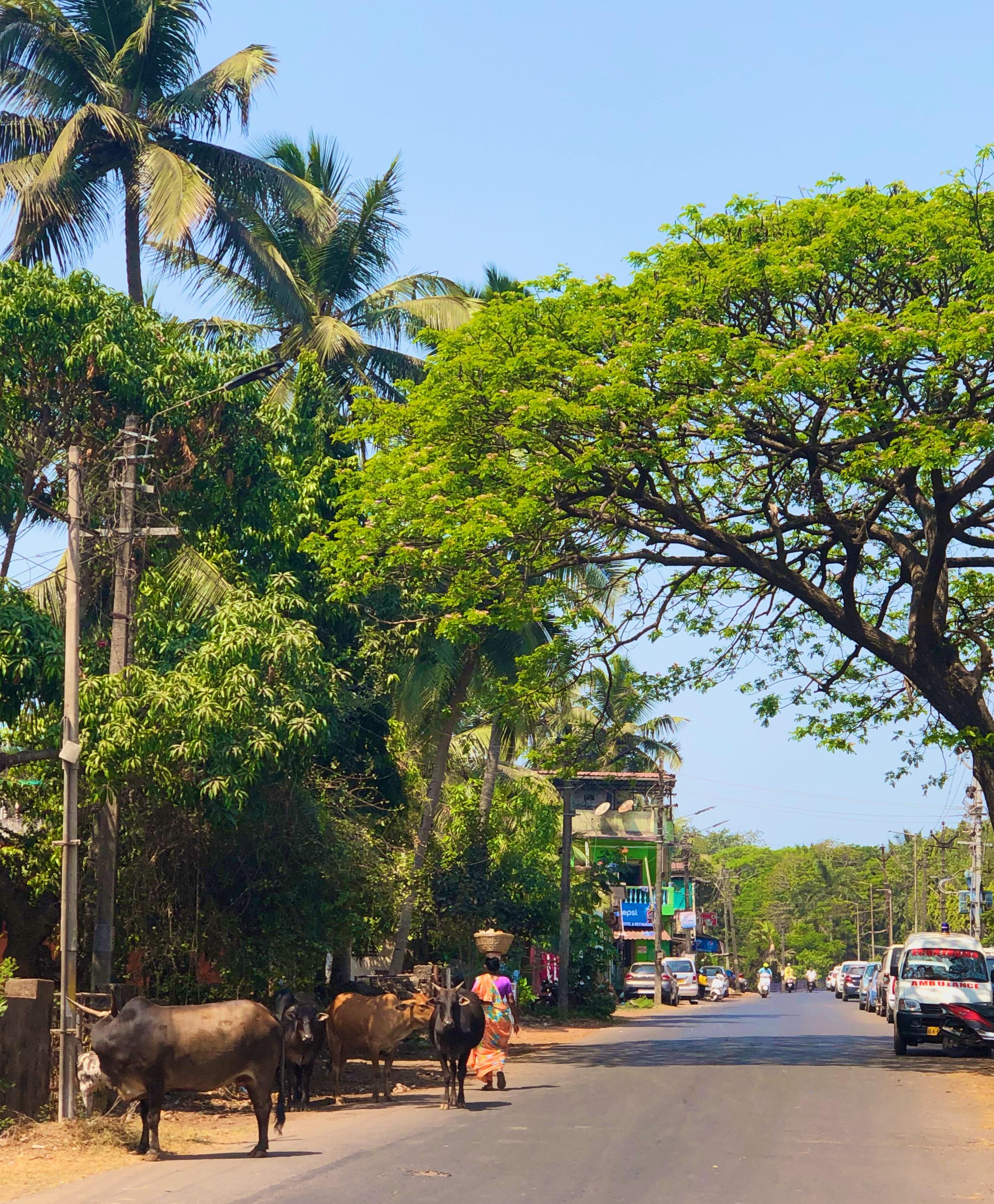 Tipikus vidéki utcakép