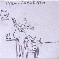 Akrobata malac