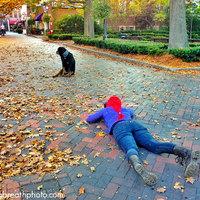 Lélegzetelállító fotók kutyákról embereknek