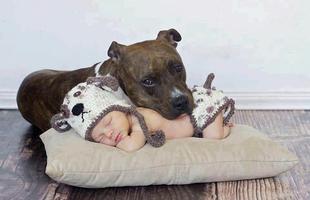 A gyerek legjobb barátja