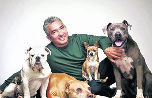 Miért fontos alkalmazni a kutyapszichológiát?