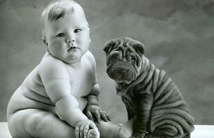 Kutyát minden gyereknek!