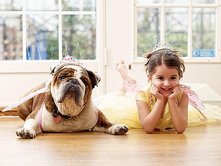 ballet-dog-440.jpg