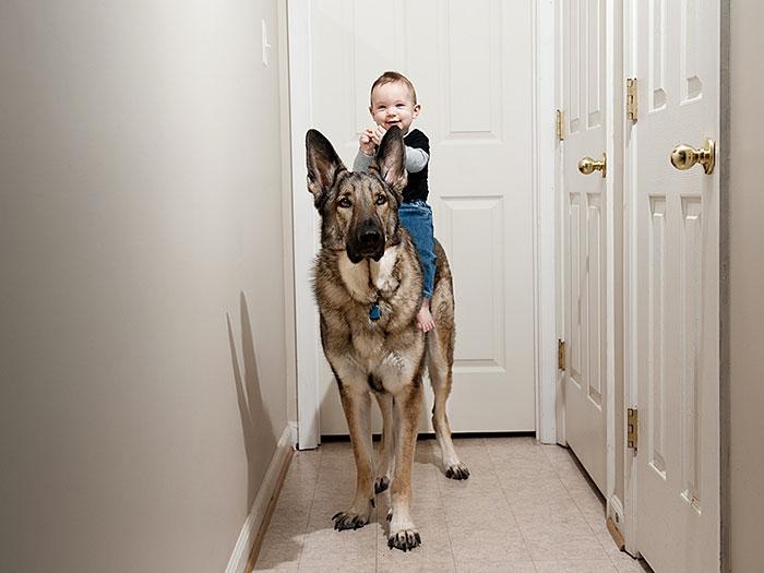 cute-big-dogs-and-babies-14.jpg
