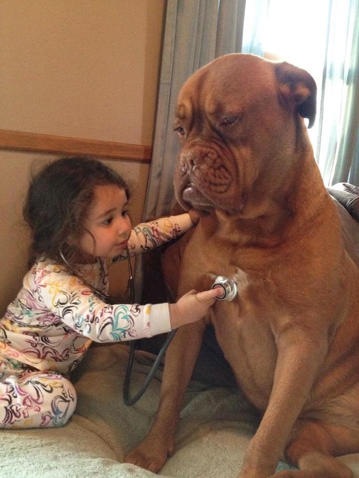 cute-big-dogs-and-babies-17.jpg