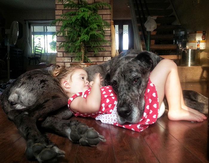 cute-big-dogs-and-babies-5.jpg
