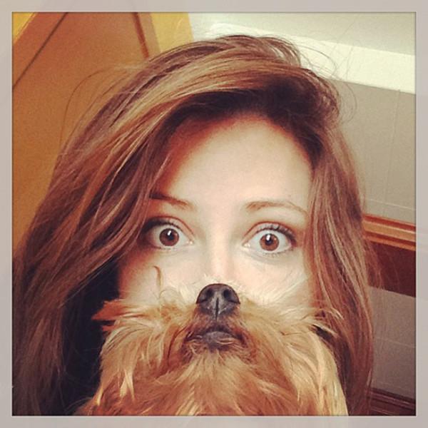 dog-beard-2-600x600.jpg