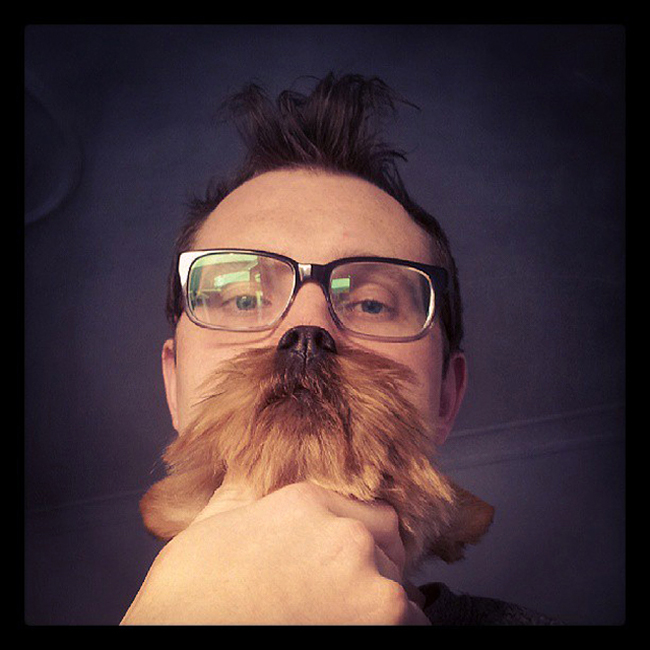 dog-beard-3_1.jpg