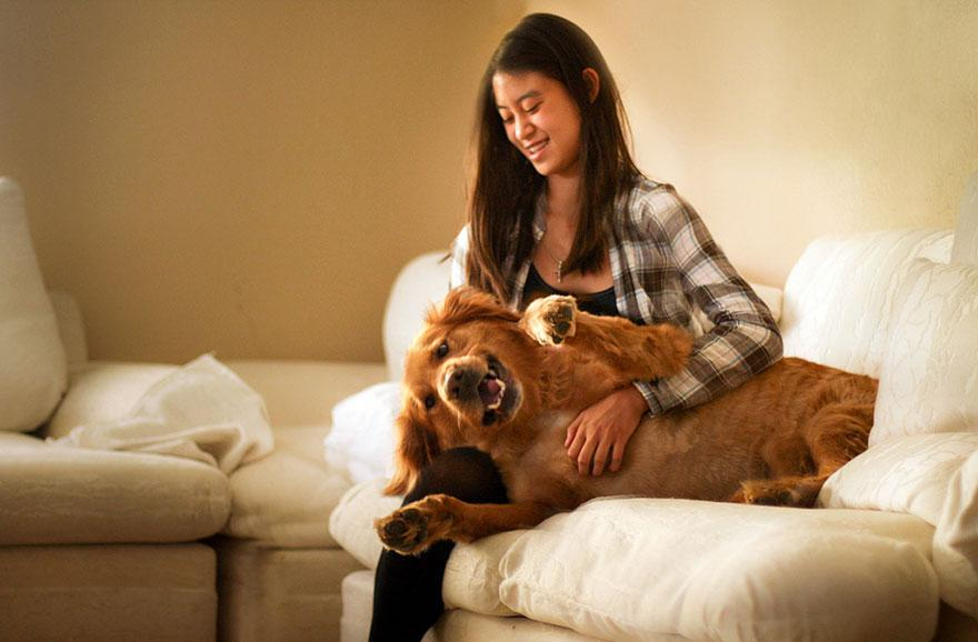 dog-photography-chuppy-golden-retriever-jessica-trinh-1.jpg