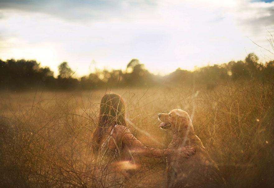 dog-photography-chuppy-golden-retriever-jessica-trinh-2.jpg
