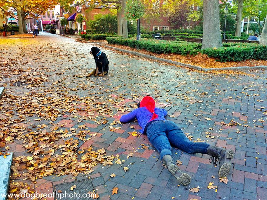 dogs-dog-breath-photography-kaylee-greer-42.jpg