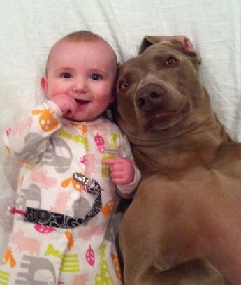 ellen-pet-pic-babydog.png
