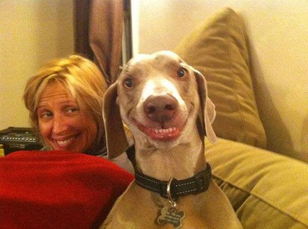 funny-derpy-animals-24.jpg