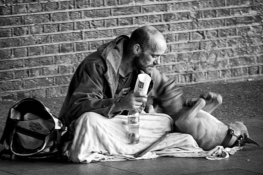 homeless-dogs-and-owners-11.jpg