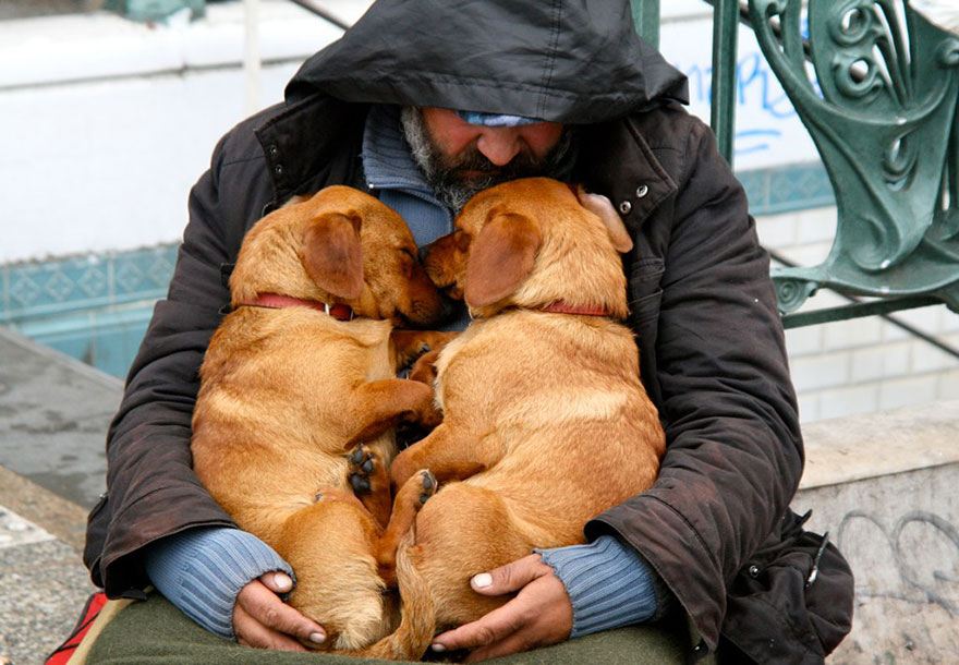 homeless-dogs-and-owners-12.jpg
