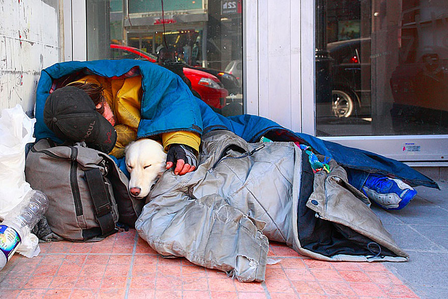 homeless-dogs-and-owners-2.jpg
