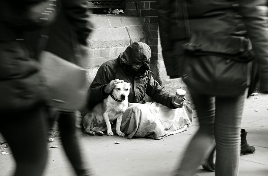 homeless-dogs-and-owners-6.jpg