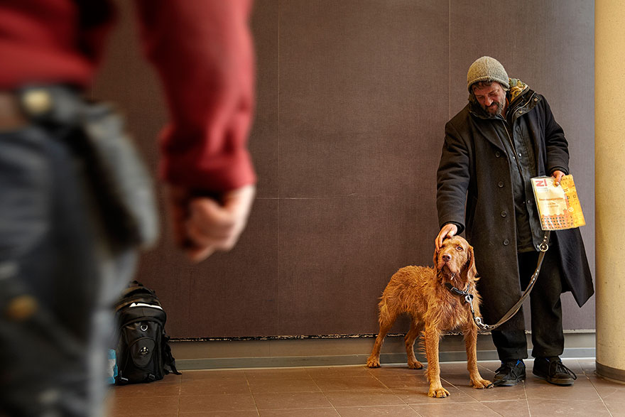 homeless-dogs-and-owners-8.jpg