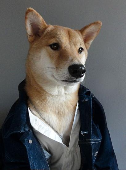 jean-jacket.jpg