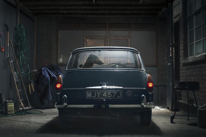 martin-usborne-the-silence-of-dogs-in-cars-4.jpg