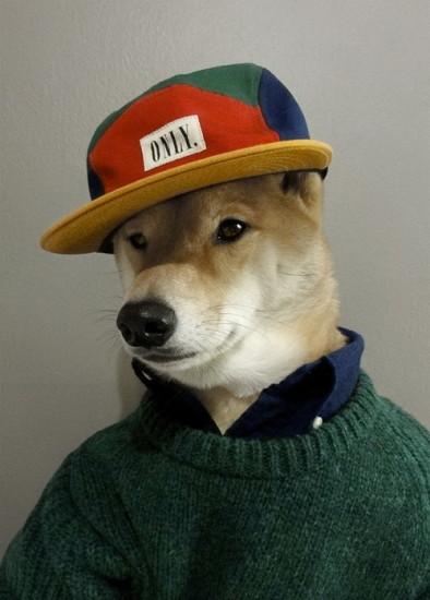only-hat.jpg