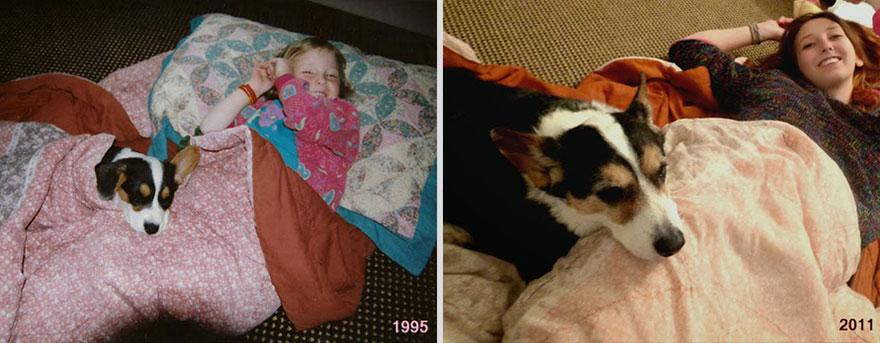 pets-before-after-33.jpg
