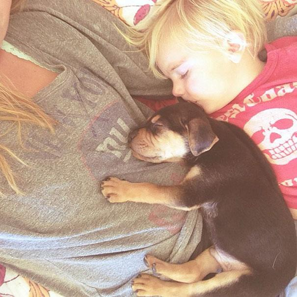 toddler-naps-with-puppy-theo-and-beau-1.jpg