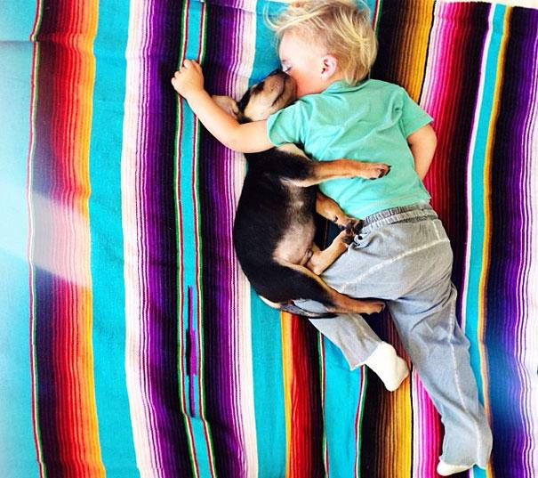 toddler-naps-with-puppy-theo-and-beau-10.jpg