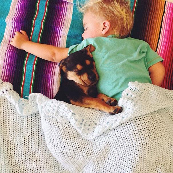 toddler-naps-with-puppy-theo-and-beau-11.jpg