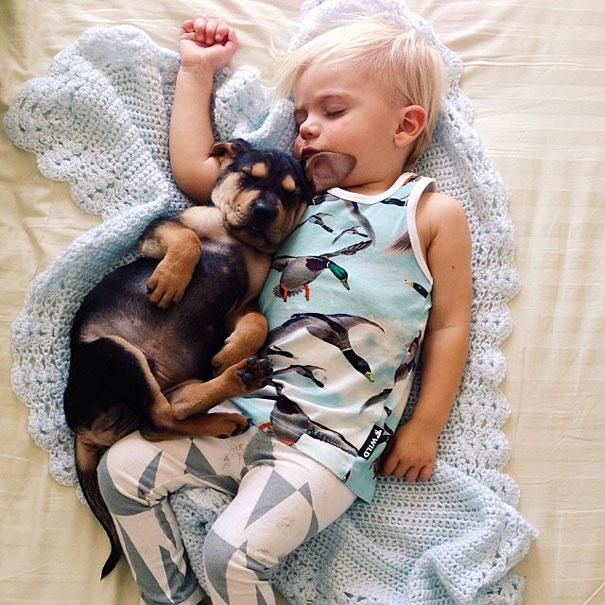 toddler-naps-with-puppy-theo-and-beau-12.jpg